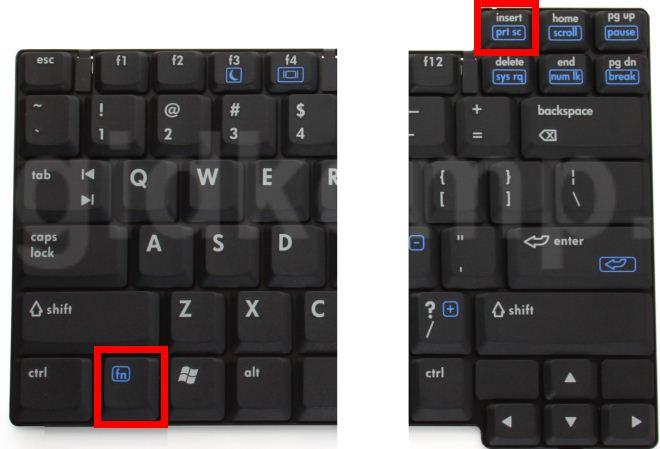 сочетание клавиш Fn+PrtScr