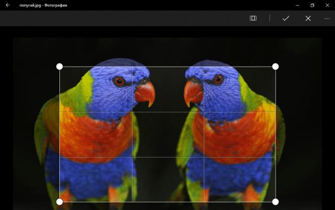 рамка с областью обрезки фото