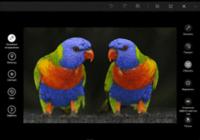 Как обрезать фото в Windows 10